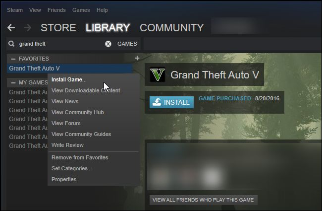 Steam Library (2)
