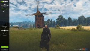 The Witcher 3 Ansel Screen shots (5)