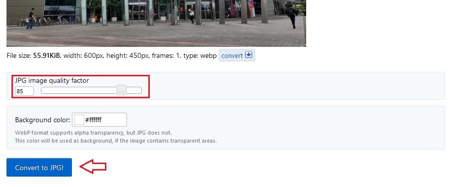 چگونه تصاویر WebP را به JPG تبدیل کنیم؟